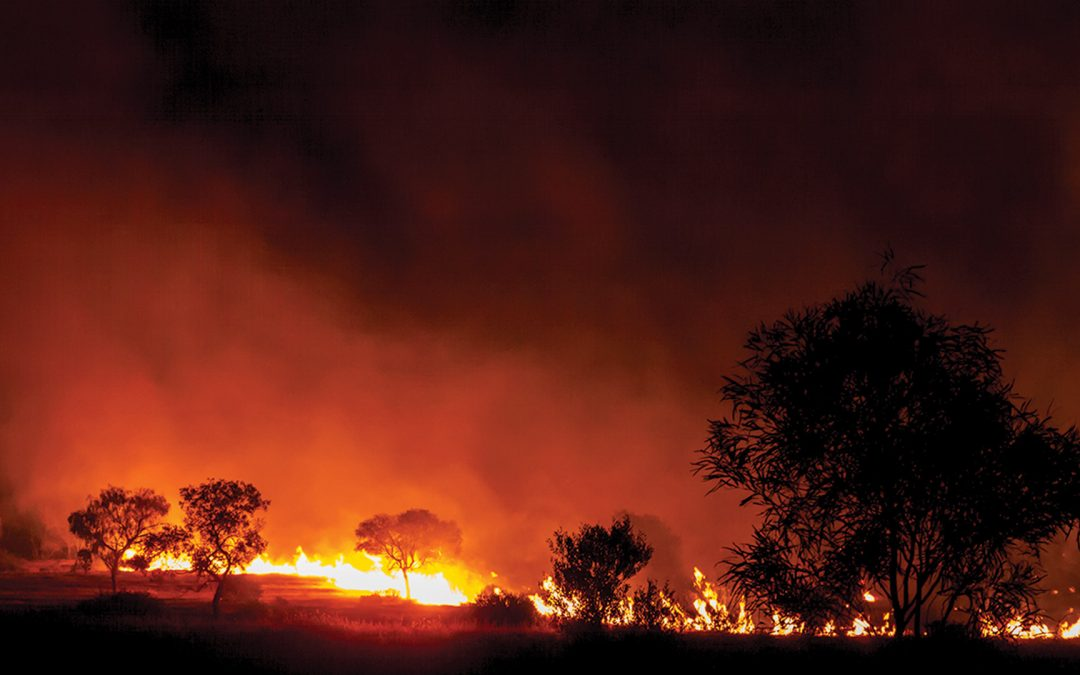 Preparing Your Business For Bushfire Season